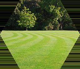 lawnservice - Lawn Service